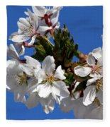 Cherry Blossom Blue Sky - 1 Fleece Blanket
