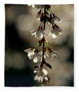 Cherry Blossom Bokeh Fleece Blanket