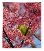Cherry Blossom Time Fleece Blanket