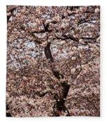 Cherry Blossom Trees In Potomac Park Fleece Blanket