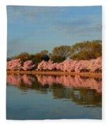 Cherry Blossoms 2013 - 001 Fleece Blanket