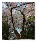 Cherry Blossoms 2013 - 056 Fleece Blanket