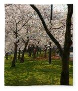 Cherry Blossoms 2013 - 057 Fleece Blanket