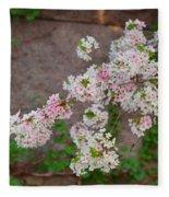 Cherry Blossoms 2013 - 067 Fleece Blanket