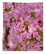 Cherry Blossoms 2013 - 096 Fleece Blanket