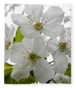 Cherry Blossoms Fleece Blanket