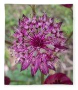 Cherry-queen Of The Prairie Flower Fleece Blanket