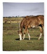 Chestnut In The Pasture Fleece Blanket