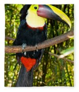 Chestnut Mandibled Toucan Fleece Blanket