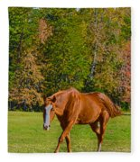 Chestnut Red Horse Fleece Blanket