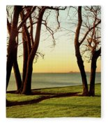 Chicago Lakefront Trail And Lincoln Fleece Blanket