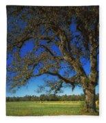 Chickamauga Battlefield Fleece Blanket