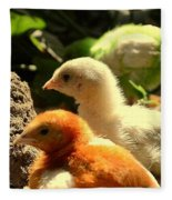 Cute Chicks Fleece Blanket
