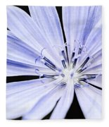Chicory Flower Macro Fleece Blanket