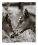 Childhood Friends Fleece Blanket