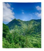 Chimney Tops Mountain In Great Smoky Mountains  Fleece Blanket