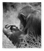 Chimpanzee In Thought Fleece Blanket