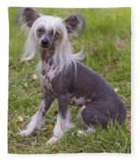 Chinese Crested Dog Fleece Blanket