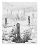 Chinese Grave Markers Fleece Blanket
