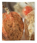 Chinese Lantern Plant - D Fleece Blanket