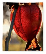 Chinese Lantern Plant - Glow Fleece Blanket