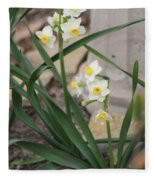 Chinese Sacred Lily Fleece Blanket