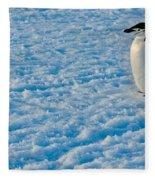 Chinstrap Penguin Fleece Blanket