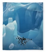 Chinstrap Penguins On Blue Iceberg Fleece Blanket