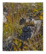 Chipmunk In Yellowstone Fleece Blanket