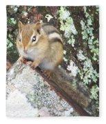 Chipmunk On A Log Fleece Blanket