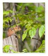 Chipmunk Shares Fence Post Fleece Blanket