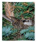 Chipping Sparrow On Nest Fleece Blanket