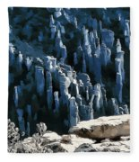 Chiricahua Pinnacles D Fleece Blanket