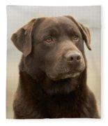 Chocolate Labrador Fleece Blanket