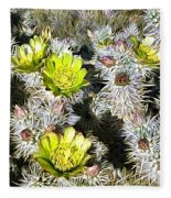 Cholla Flowers Fleece Blanket