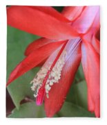 Christmas Cactus 3 Fleece Blanket