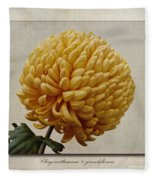 Chrysanthemum Grandiflorum Yellow Fleece Blanket