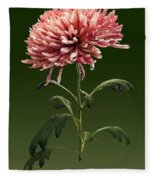 Chrysanthemum Shelbers Fleece Blanket