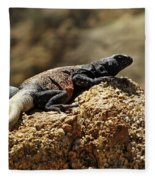 Chucka Walla Basking Fleece Blanket