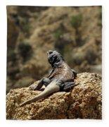 Chucka Walla Overlook Fleece Blanket