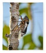 Cicada On Fig Tree Fleece Blanket