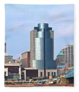 Cincinnati Panoramic Skyline Fleece Blanket