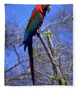 Cincy Parrot Fleece Blanket