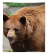 Cinnamon Black Bear Fleece Blanket