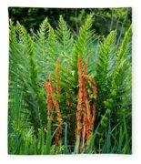 Cinnamon Fern Fleece Blanket