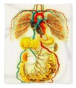 Circulatory System Fleece Blanket
