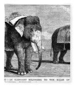 Circus Elephants, 1884 Fleece Blanket