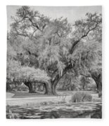 City Park Giants - Paint Bw Fleece Blanket