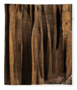 Clay Organ Pipes Formation In Front Fleece Blanket