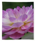 Clearly Gorgeous Fleece Blanket